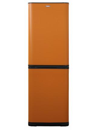 Холодильник Бирюса T631